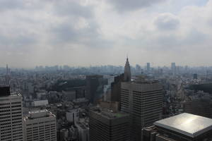東京都庁から見た絶景
