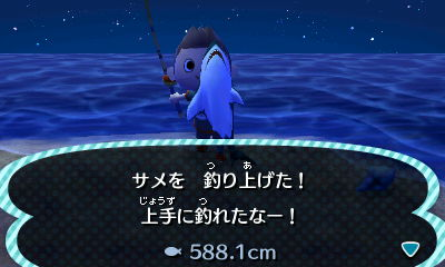 サメを釣り上げた! 上手に釣れたなー 588.1cm