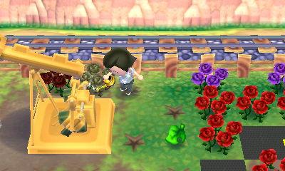 枯れた薔薇に水やり